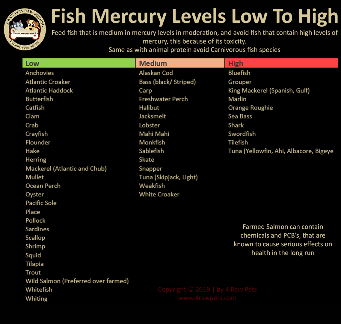 Fish-mercury-levels-low-to-high
