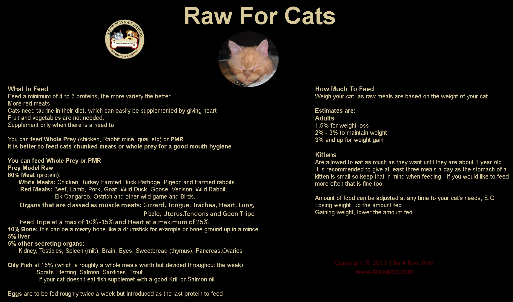 Raw for cats