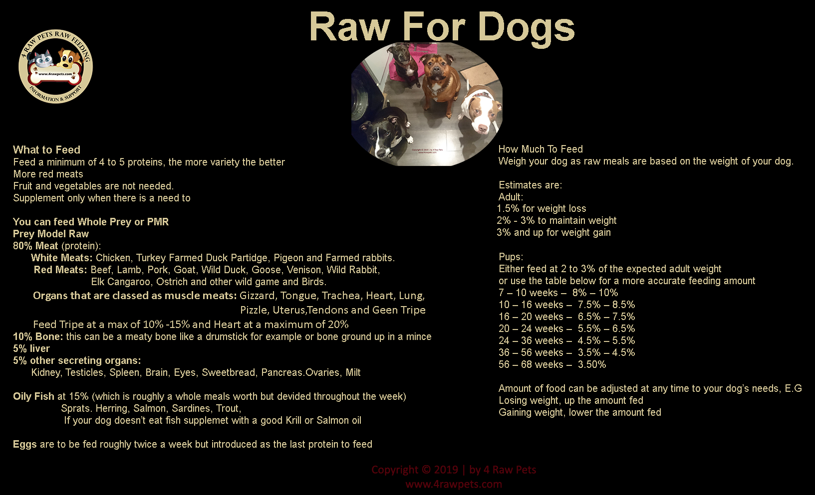 Raw for dogs