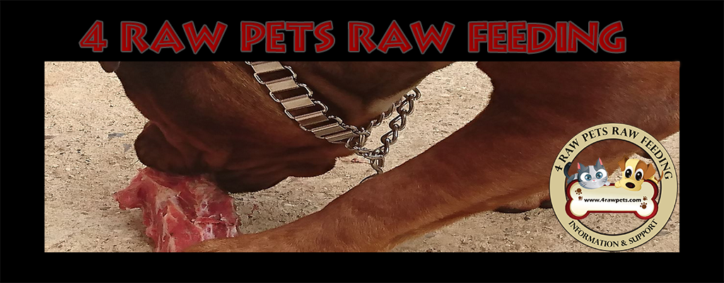 cropped-4RawPets-header-web.png